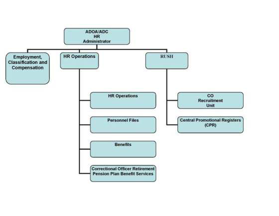 human services org chart